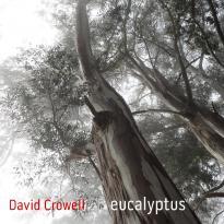 David Crowell: Eucalyptus