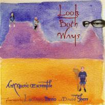 David Sherr's ArtMusic Ensemble: Look Both Ways