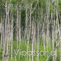 Numinous: Vipassana