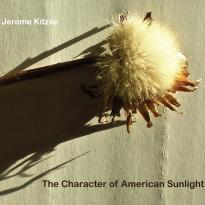 Jerome Kitzke: The Character of American Sunlight