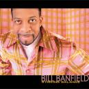 Bill Banfield - Striking Balance