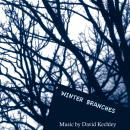 David Kechley: Winter Branches