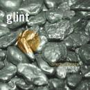 Timothy McAllister: Glint